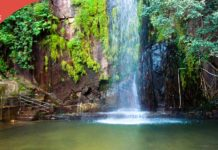 thebiharnews_kakolat_waterfalls